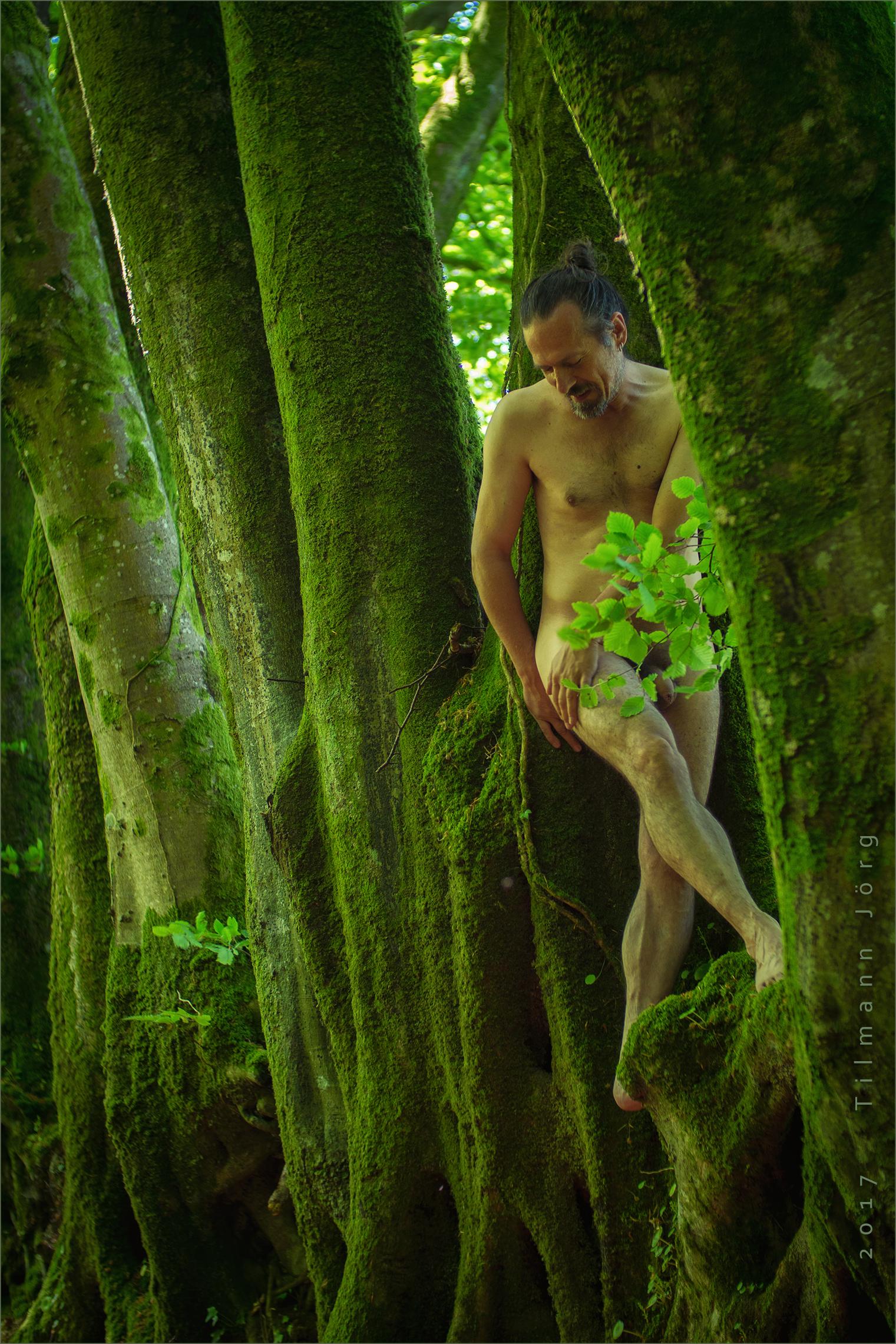 nackter mann zwischen bäumen