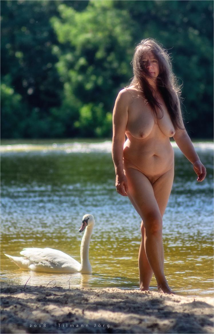 nackte frau am see mit schwan