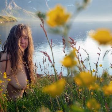 Nackte Frau in einer Blumenwiese auf den Lofoten