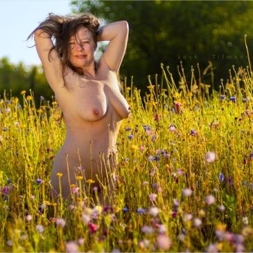 nackte frau in einer Sommerwiese